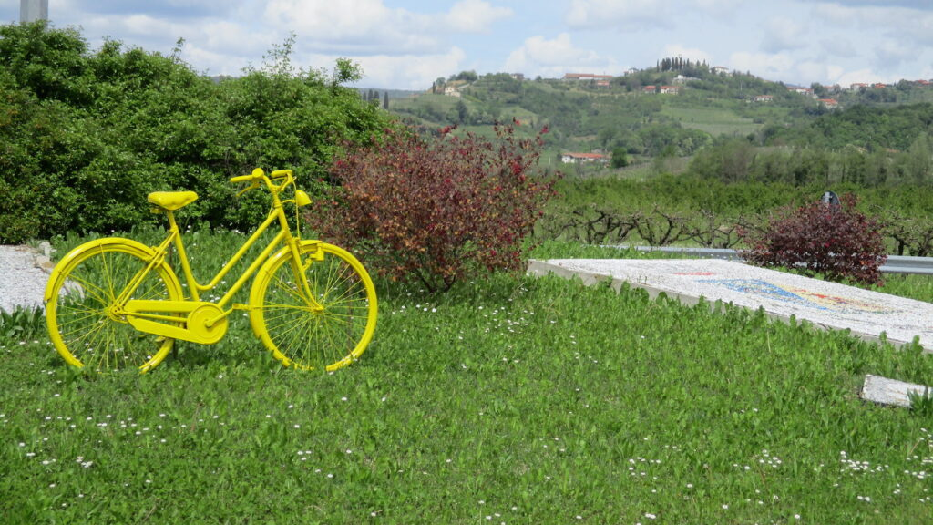 tour in bici (2)